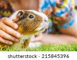 little girl lying on grass and... | Shutterstock . vector #215845396