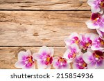 orchids bloom. white with pink... | Shutterstock . vector #215854936