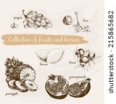 collection of fruits and... | Shutterstock .eps vector #215865682