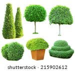 Collage Green Trees And Bushes...