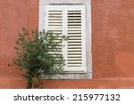 olive tree in front of the... | Shutterstock . vector #215977132