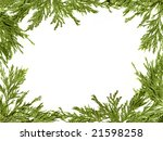 green christmas tree branches... | Shutterstock . vector #21598258