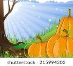 pumpkins near a tree in the... | Shutterstock .eps vector #215994202