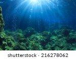 underwater ocean scene with air ... | Shutterstock . vector #216278062