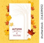seasonal background with maple... | Shutterstock .eps vector #216339052