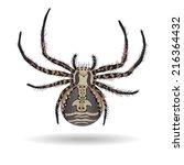 Crab Spider  Xysticus Ulmi  On...