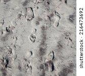 footprints on beach sand   Shutterstock . vector #216473692