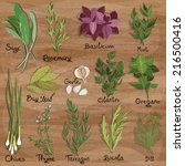 set of vector herbs and spices... | Shutterstock .eps vector #216500416