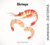 watercolor shrimp. sea food...   Shutterstock .eps vector #216710416