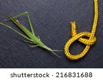 gold color rope cable with... | Shutterstock . vector #216831688