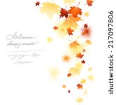 maple falling leaves isolated... | Shutterstock .eps vector #217097806