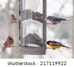 Four Different Bird Species At...