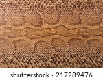 brown snake pattern imitation ... | Shutterstock . vector #217289476