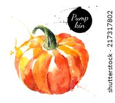 Pumpkin. Hand Drawn Watercolor...