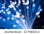 Small photo of Blue fibre optic cable
