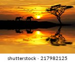 Africa Parading Along The Lake