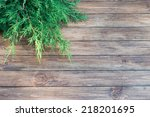 christmas tree branch on a... | Shutterstock . vector #218201695