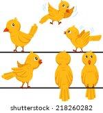 illustrator of birds funny... | Shutterstock .eps vector #218260282