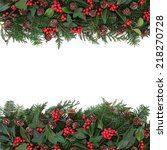 winter and christmas floral... | Shutterstock . vector #218270728
