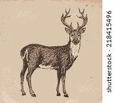 hand drawn sketch of reindeer... | Shutterstock .eps vector #218415496
