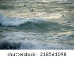 seagulls over the stormy sea | Shutterstock . vector #218561098