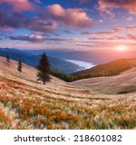 colorful autumn sunrise in the... | Shutterstock . vector #218601082