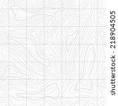 seamless light topographic topo ... | Shutterstock .eps vector #218904505