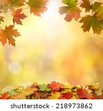 autumn  leaves | Shutterstock . vector #218973862