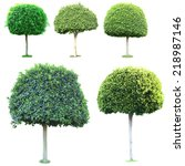 collage of green trees isolated ... | Shutterstock . vector #218987146
