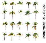 20 of coconut trees on white... | Shutterstock . vector #219111922