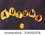 autumn leaves | Shutterstock . vector #219202378