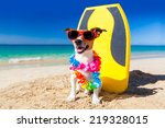 dog at the beach with a... | Shutterstock . vector #219328015