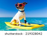 dog surfing on a surfboard... | Shutterstock . vector #219328042