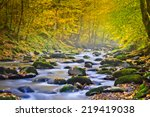 Magic River In Forest  Autumn...