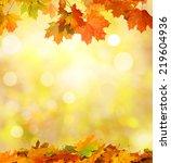 background of falling autumn... | Shutterstock . vector #219604936