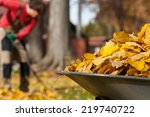 View Of Autumnal Leaves In A...