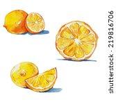 lemon set   watercolor