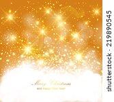 vector golden sparkling... | Shutterstock .eps vector #219890545