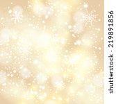 vector abstract golden... | Shutterstock .eps vector #219891856