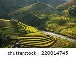 Beautiful Rice Terraces  South...