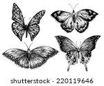Butterfly Vector Set