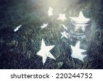 catching wishes | Shutterstock . vector #220244752