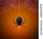 Spider And Cobwebs On Orange...