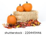 Studio Isolated Fall Pumpkins...
