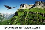 Eagle Flying Above Ordessa...