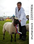 Small photo of WEEDON, UK - AUGUST 28: The BCC champion sheep and owner stop for photos during the Grand Livestock parade at the Bucks County show on August 28, 2014 in Weedon