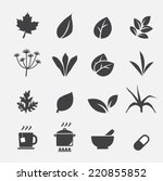 herb icon | Shutterstock .eps vector #220855852