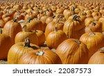 never ending pumpkin patch | Shutterstock . vector #22087573