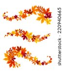 Autumn Colorful Leaves. Vector...