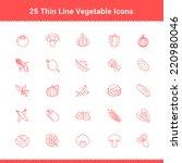 set of thin line stroke... | Shutterstock .eps vector #220980046